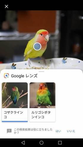 Screenshot_20181123-170142.jpg