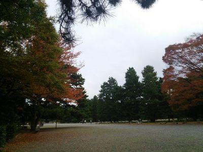2013-11-09 13.44.07.jpg