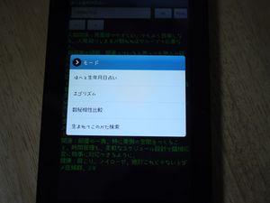 P1040673.jpg