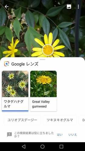 Screenshot_20181124-155946.jpg